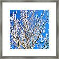 Winds Upon The Branchs II Framed Print