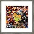 Wooden Heart Framed Print