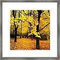 Yellow Park Framed Print