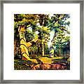 Green Summer-the Oak Forest Framed Print