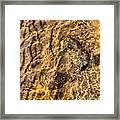 Lakescape 1 Framed Print