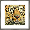 Waiting For Prey Framed Print