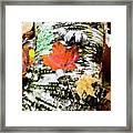 001 Framed Print