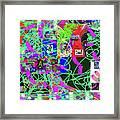1-3-2016eabcd Framed Print