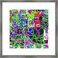 1-3-2016eabcde Framed Print