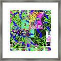 1-3-2016eabcdefghi Framed Print