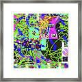 1-3-2016eabcdefghij Framed Print