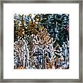 Along The Walker River Framed Print
