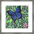 Blue Butterfly Two Framed Print