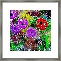 Dream Garden II Framed Print