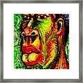 Faces Unseen Series Framed Print