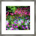 Garden Flowers With Tulips Framed Print