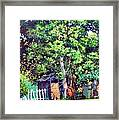 Hackberry Tree Framed Print