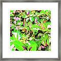 Jamaican Croton Framed Print