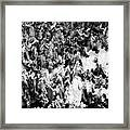 Mountain Ghosts Framed Print