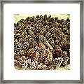Organize Pinecones Framed Print