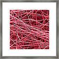 Pink Fiberglass Insulation, Sem Framed Print