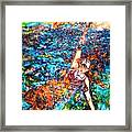 Rising To The Surface Like A Last Breath Last Scream Framed Print