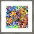 Sumatran Rhino Framed Print