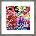 10142017107 Framed Print