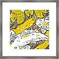 Koi Fish Framed Print
