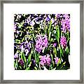Sounds Of Summer  Framed Print
