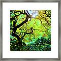 12 Abstract Japanese Maple Tree Framed Print