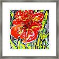 Digital Flower Painting Framed Print