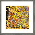 Autumn Beech Leaves Framed Print