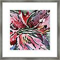 Pink Day Lily Framed Print by Mindy Newman