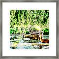 Princes Of The Forest Framed Print by Jason Christopher