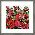 2017 Monona Farmers' Market August Dahlias 1 Framed Print