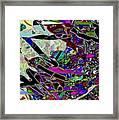 21237 Framed Print