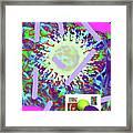 3-21-2015abcdefghijklmnopqrtuvw Framed Print