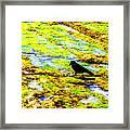 Sunset Bay Beach Framed Print