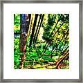 Landscape Image Framed Print