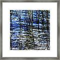Sawgrass Revisited Framed Print