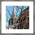 Architecture Series Framed Print