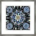 Diatoms Framed Print by M I Walker