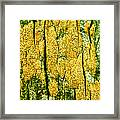 Tree Bark Framed Print