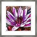 A Beautiful Purple Water Lilies Flower Framed Print