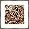 A Crack On A Brown Stone Block Framed Print