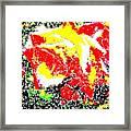 A Rose Is 2 Framed Print