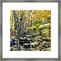 A Smokey Mountain Stream  Framed Print
