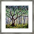 A Summer Forest Framed Print