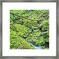 Above Moine Creek Framed Print