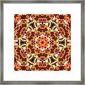 Abstract 120410 Framed Print