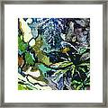 Abstract Dandelion Framed Print