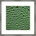 Abstract Green Alien Bubble Skin Framed Print