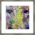 Abstract Musings Framed Print